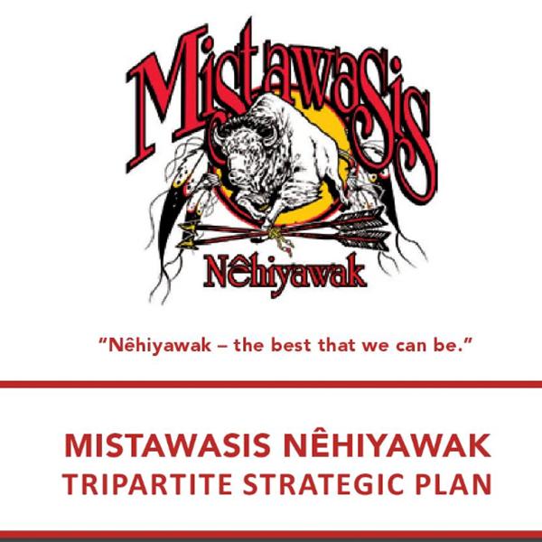 Tripartite Strategic Plan