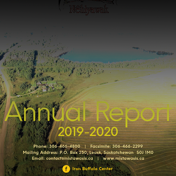 2019-2020 Annual Report and Financial Statements